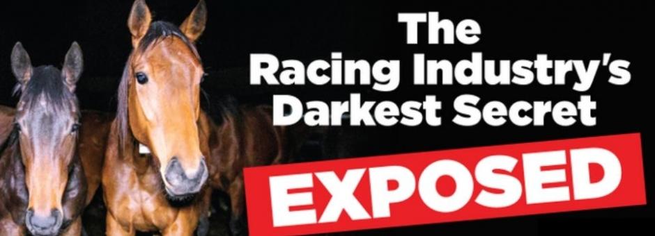 Horse Racing - The Racing Industry's Darkest Secret Exposed