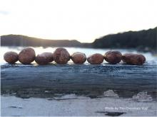 The Chocolate Yogi - chocolates on driftwood - via thechocolateyogi.com.au