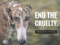 Ban greyhound racing