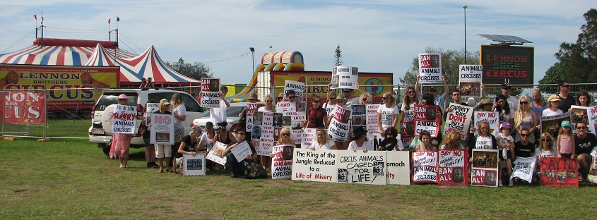 Circus protest outside Lennon Brother circus, Gold Coast, 2013
